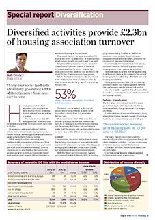 Special report - diversification