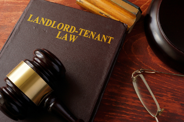 Government urged to support official body for tenants