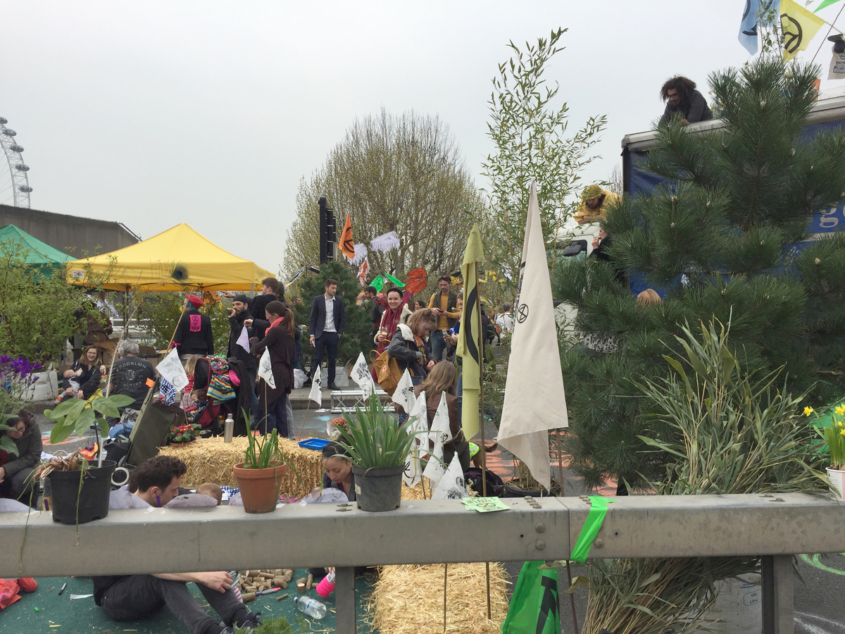Waterloo Bridge transformed into an urban oasis