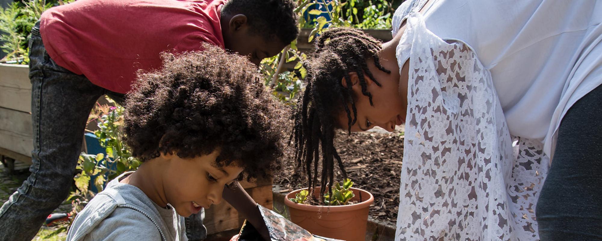 Global Generation Paper Garden outreach
