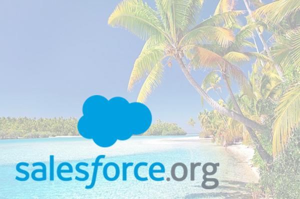 The Salesforce.Org Hawaiian themed fringe!