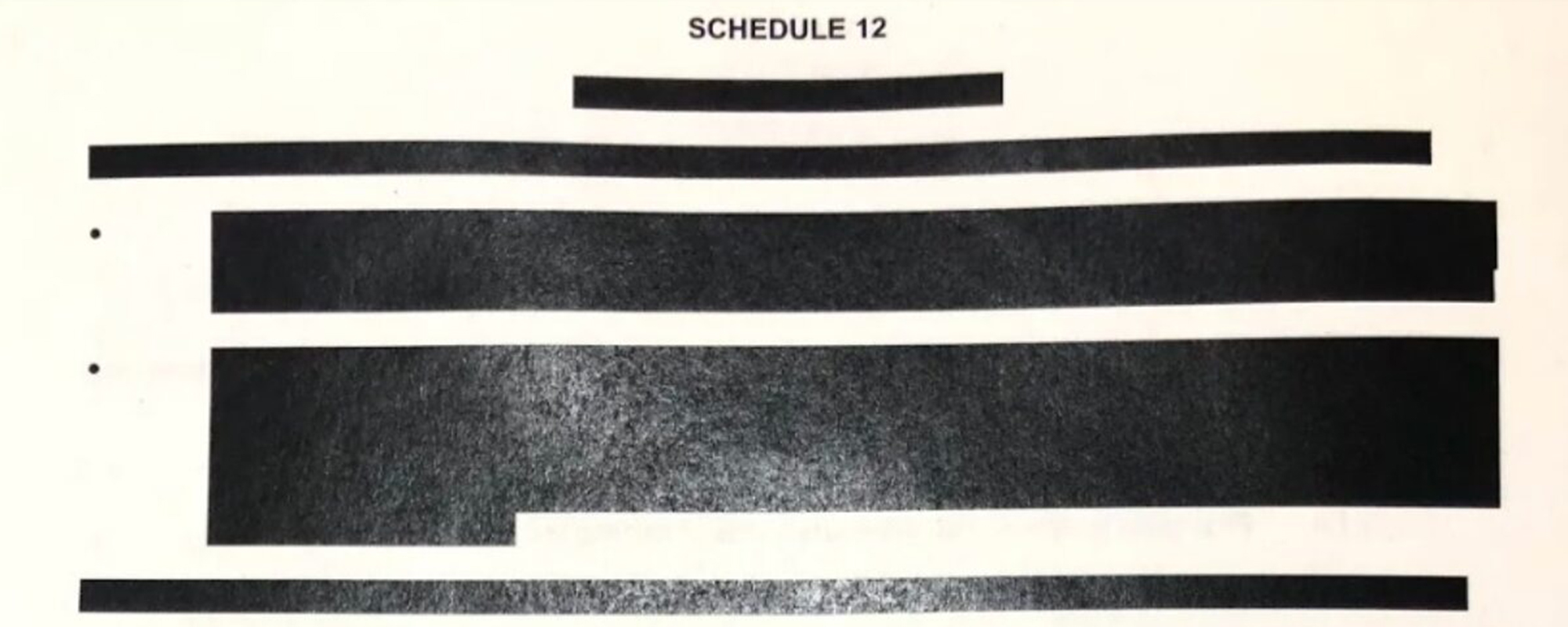 Haringey Council redacted document
