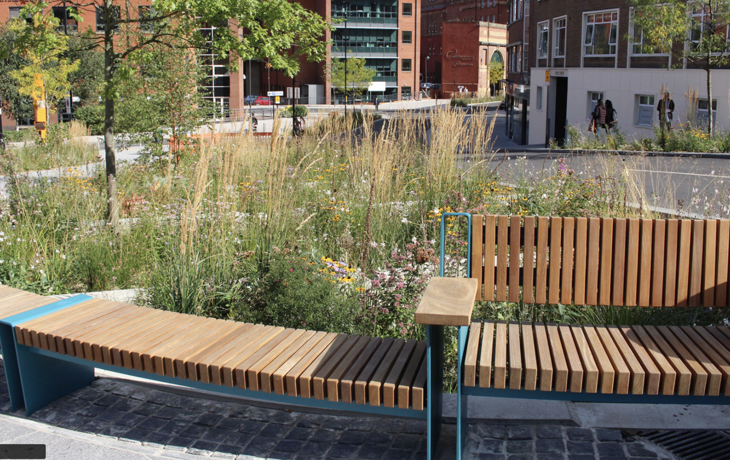 Sustainable drainage in Sheffield city centre by Robert Bray Associates