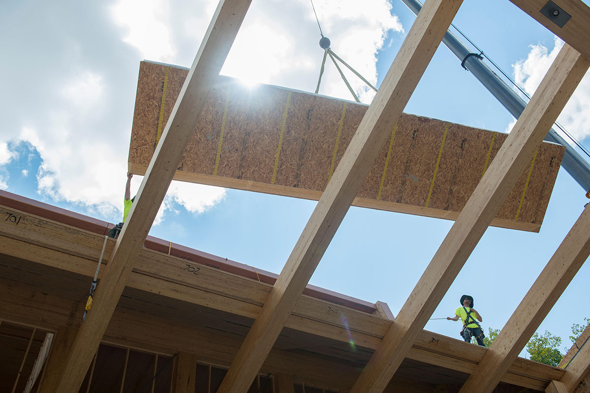 Hanging in the balance: what is the future for cross-laminated timber?