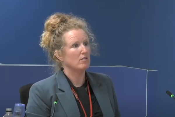 "Dr Barbara Lane warned that the use of combustible materials on high rises was ""an accident waiting to happen"" (picture: Grenfell Tower Inquiry)"