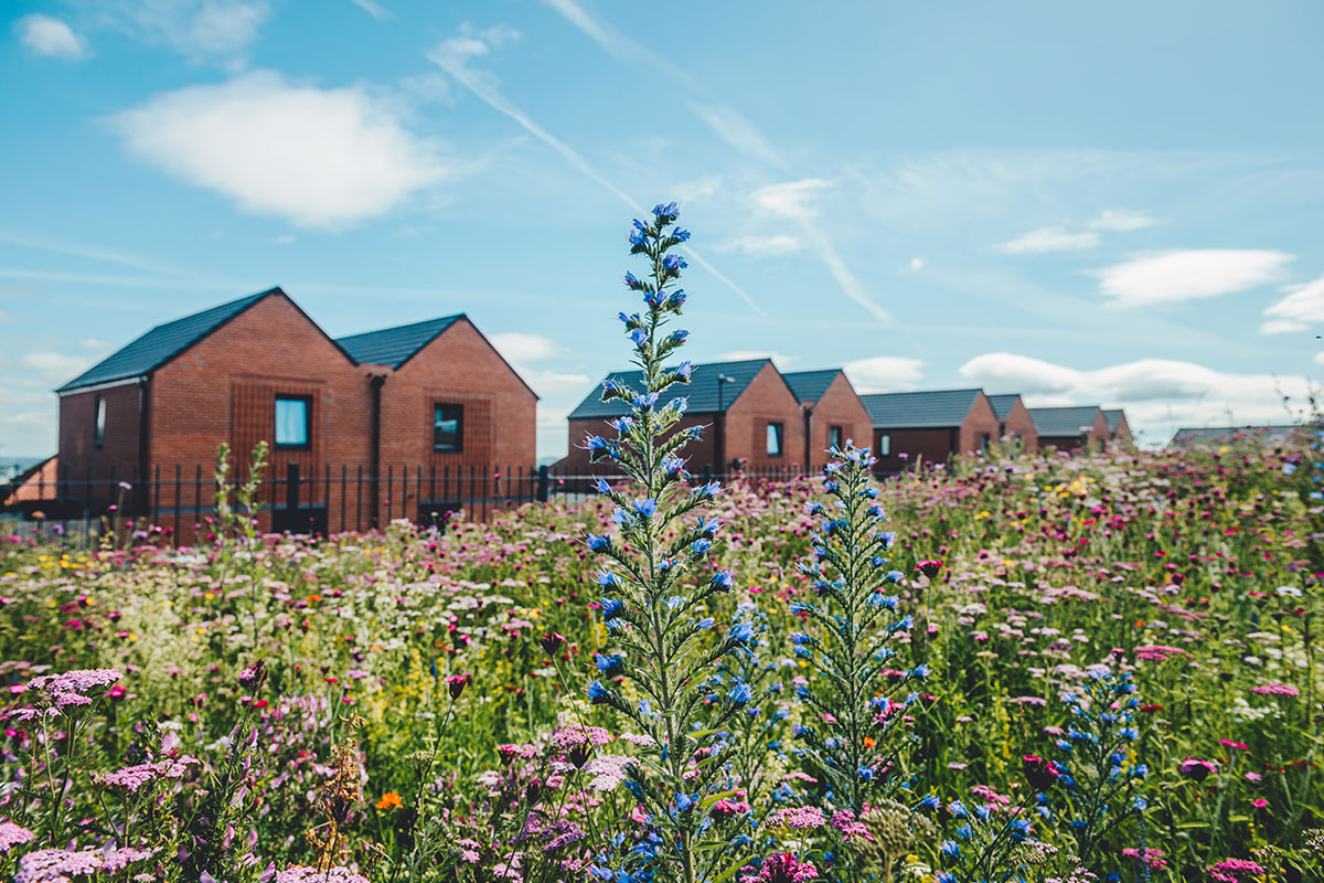Case study: South Yorkshire Housing Association