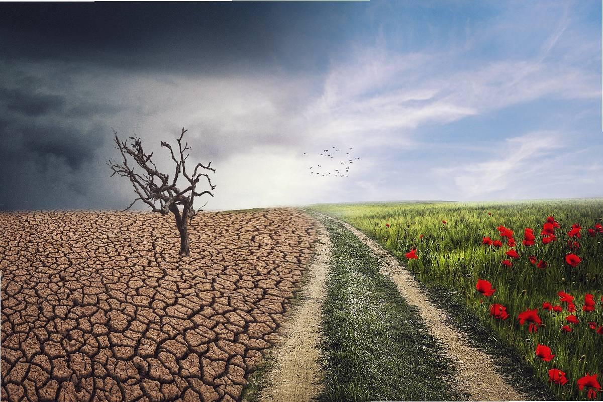 Climate Education to achieve Net Zero 2050