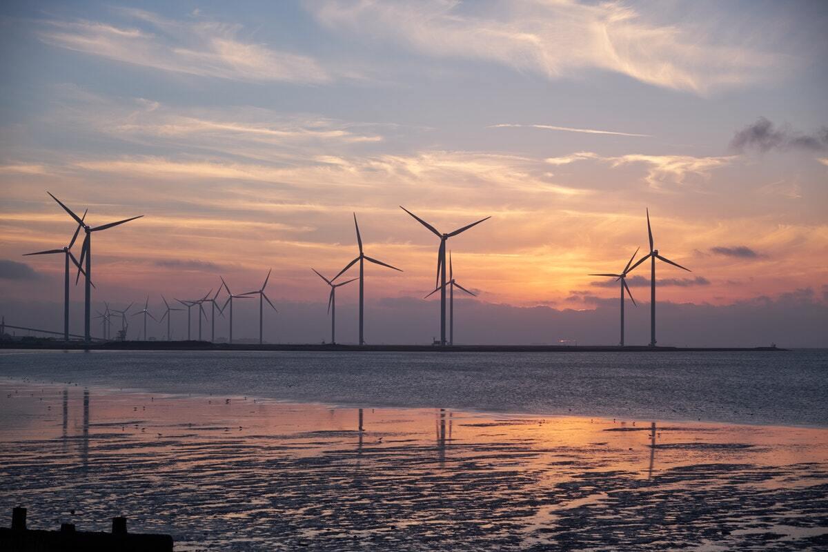 Energi Coast appoint new chair Tony Quinn
