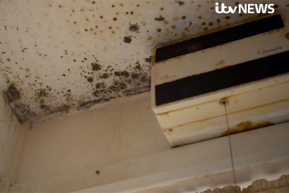 Clarion apologises to residents after ITV investigation exposes squalid conditions in London estate