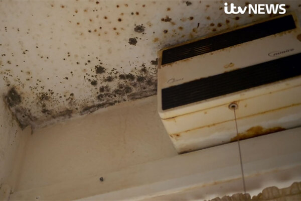 Government brands squalid housing conditions 'unacceptable' after ITV documentary