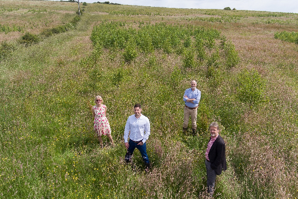 Thirteen partners with Forest Carbon to create County Durham woodland