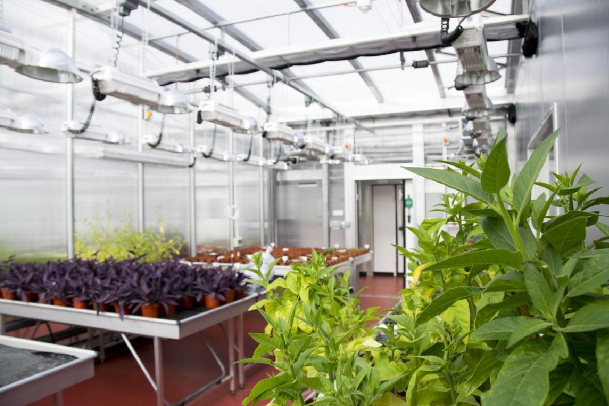 University of Bristol's 900 laboratories receive green status in world first (Photo Credit: University of Bristol)